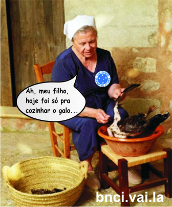 cozinhar_galo